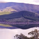 Mansfield and Mt Buller (19)